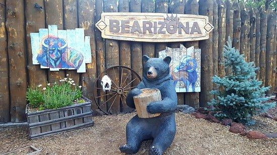 Bearizona williams az discount coupons