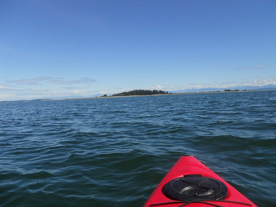 Comox, Canada: Kayaking to Tree Island from Union Bay