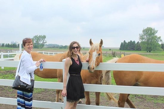 Round Lake Vineyards and Winery : Who would have thought a vineyard in MN would be so beautiful & have good wine!