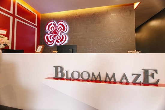 Bloommaze Boutique Hotel