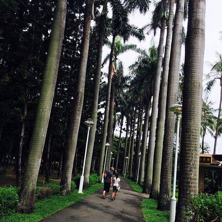 Tainan Park : 台南公園