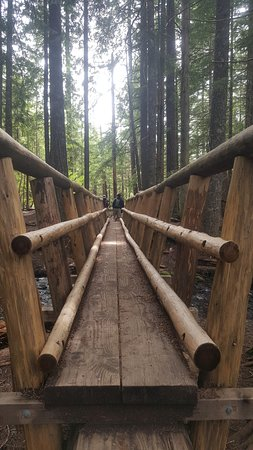 Rhododendron, OR: Cool Bridge
