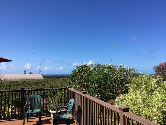 Kalaheo, Hawaï: テラスからの農園の風景