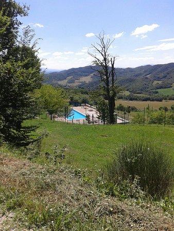 Valle Verde Agriturismo : 20160812_122324_large.jpg