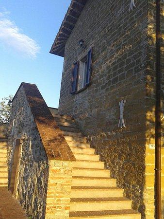 Valle Verde Agriturismo: 20160807_194959_large.jpg