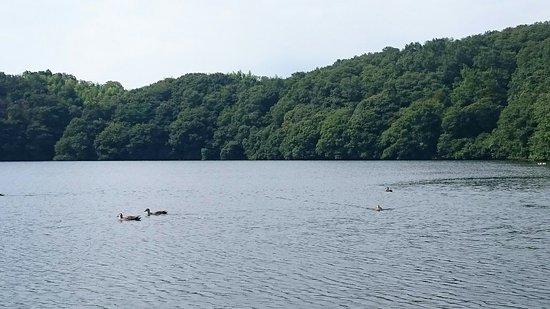 Ippekiko Lake: DSC_0909_large.jpg