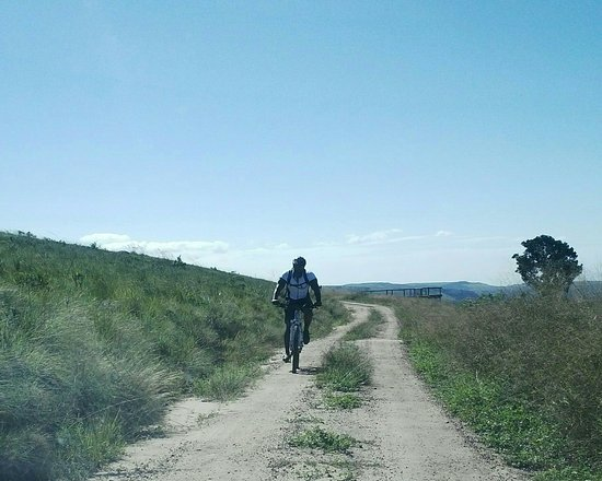 Lake Eland Game Reserve, Güney Afrika: Cycling trail at the top of the gorge