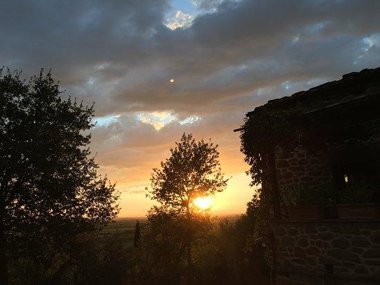 Azienda Fontelunga: photo0.jpg