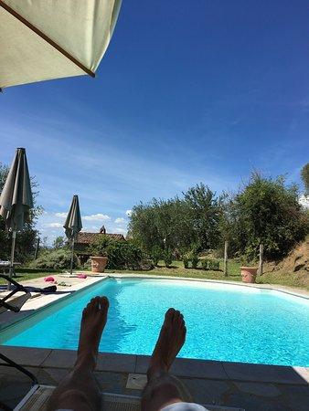 Azienda Fontelunga: photo2.jpg
