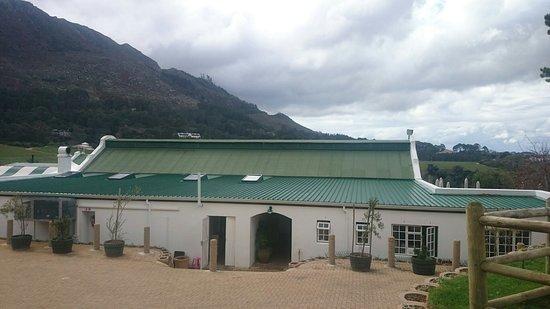 Constantia, Sydafrika: DSC_0073_large.jpg