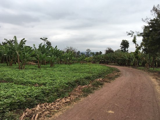 Arusha Region, แทนซาเนีย: photo4.jpg
