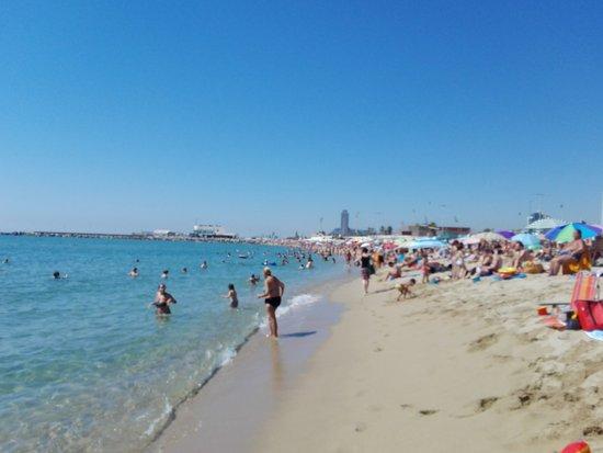beach - Picture of Nova Mar Bella beach, Barcelona - TripAdvisor