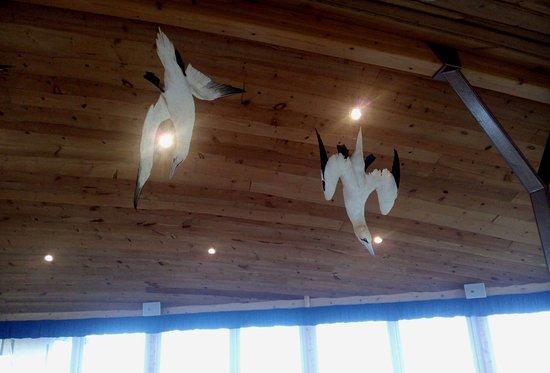 Eyrarbakki, Исландия: Interesting Decoration