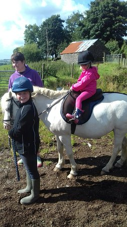 Llanllwni, UK: 20160809_161337_large.jpg