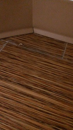 Motel 6 Jackson Airport- Pearl: A fingernail/toenail under the counter in the bathroom.