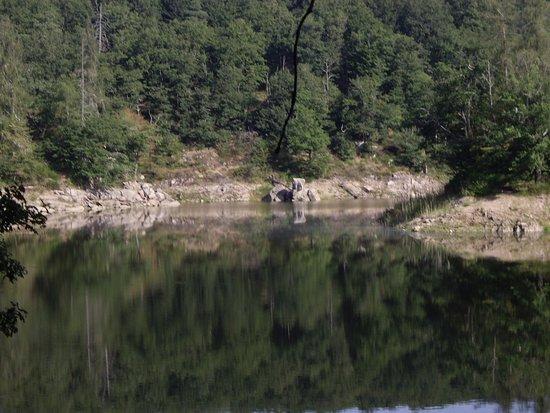 Barrage Du Lac De Pont Picture Of Lac De Pont Pont Et