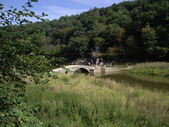 Pont Romain De La Ronce Picture Of Lac De Pont Pont Et