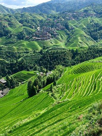 LongJi Terraces Tian ranju Inn: photo0.jpg