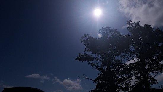 Caersws, UK: Sunny Day