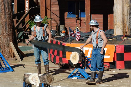 7dd4e925cefb USA Team Member - Picture of Great Alaskan Lumberjack Show ...