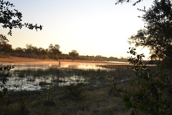 Selinda Adventure Trail: Early Morning Light - The last day
