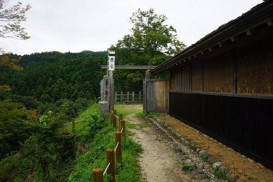 Joshi Park Asuke-jo Castle: 本丸城門-2