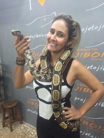 Projeto Jiboia: photo0.jpg