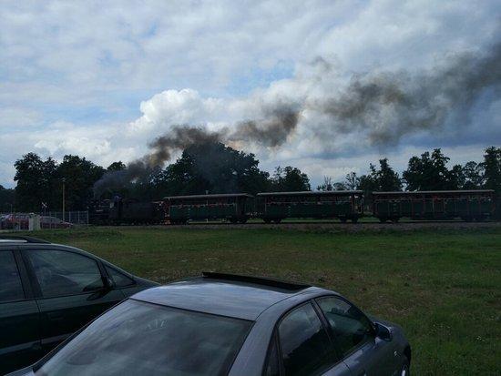 Narrow Gauge Railway of Krosnice: Zabawa dla dzieci i dorosłych. Każdy kiedyś miał małą kolejkę, pociąg lub o tym marzył. Klimat d