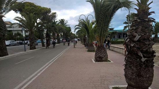 Hotel Costa Verde: IMG-20160811-WA0050_large.jpg