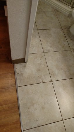 Motel 6 Cleveland West - Lorain - Amherst: Grout goes between tiles not on them