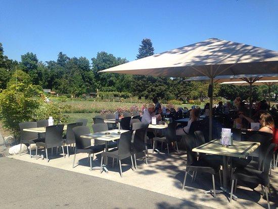 Cafeteria du jardin botanique geneva restaurant reviews for Cafe du jardin london