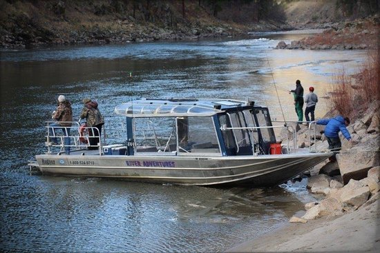 Riggins, ไอดาโฮ: Looking forward to a ride on River Adventures tour boat! This is one of the others in their flee