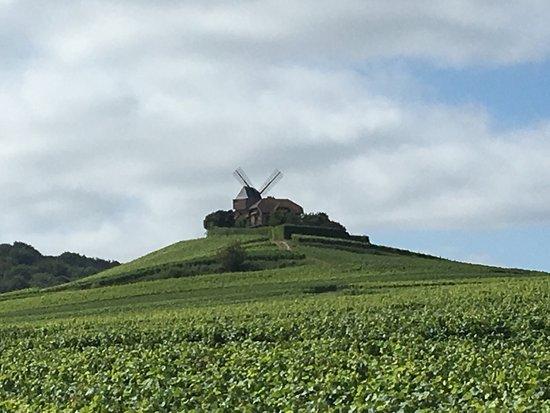 Verzenay, Francia: photo1.jpg