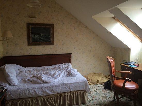 Dvaras Hotel: photo1.jpg