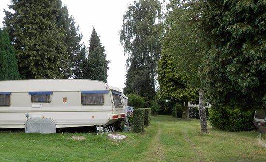 Camping Druivenland