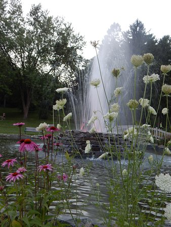 Bangor, ME: Blooms around the fountain