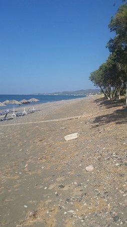 Vatera, Grecia: 20160726_095550_large.jpg