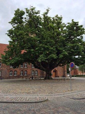 Marielyst, Dania: Nykobing F church square