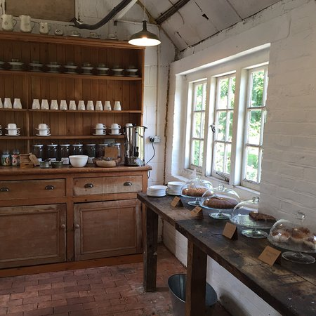 Cobham, UK: Owletts is a beautifully relaxed and intimate afternoon out