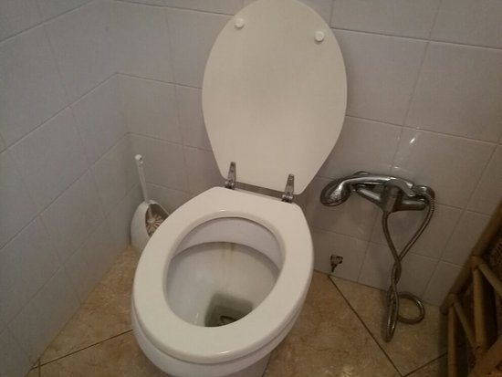 Residence Alba De Rio: IMG_20160814_073340_large.jpg