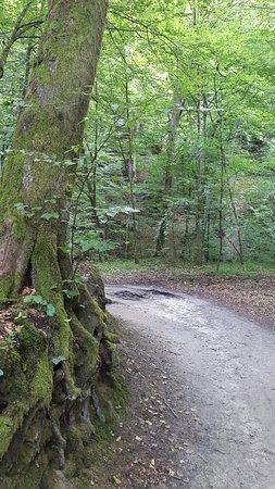 Bazantarnia Park