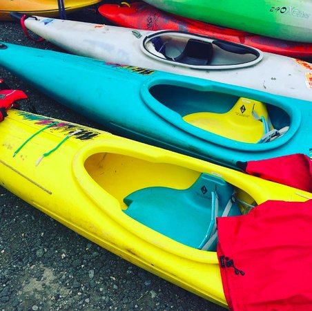 Leeming Bar, UK: Kayaks