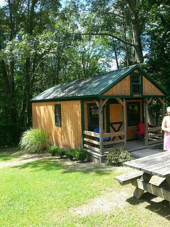 Lake Stephens Campground: 20160809_122512_large.jpg