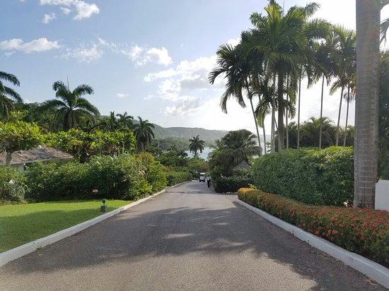 Hopewell, جامايكا: 20160808_162647_large.jpg