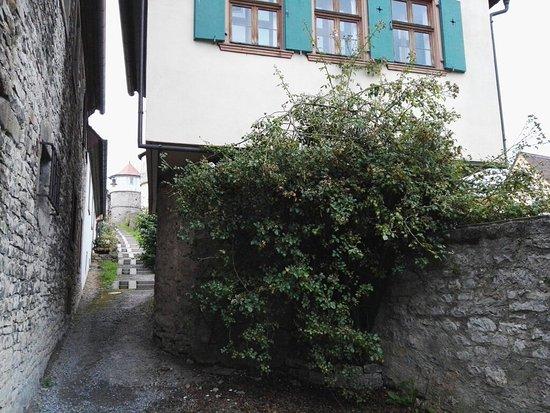 Dettelbach, Alemania: IMG_20160812_202338_large.jpg
