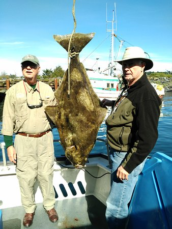 Kodiak, AK: An 85 pound halibut caught on U Rascal.