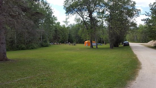 Camp Morton Provincial Park: Group camping area was ideal for family reunion