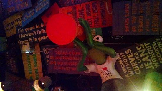 Senor Frogs : Foto do teto do Señor Frogs, tem várias frases legais!