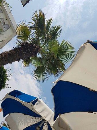 Hotel Principe Caorle : 20160731_113712_large.jpg