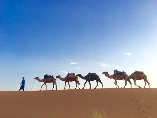 Mana del Sahara - Day Tours